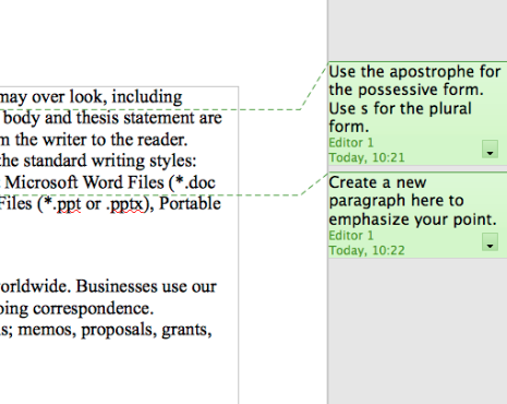 OpenOffice 3.2.1 Editor Comments Example